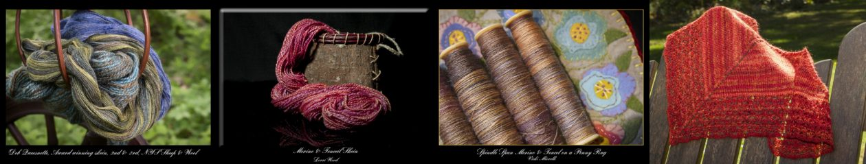 Nutmeg Spinners Guild